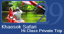Khaosok Safari Private Trip