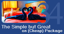 The Simple bu great on cheap Package