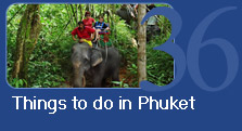 Thing to do in Phuket